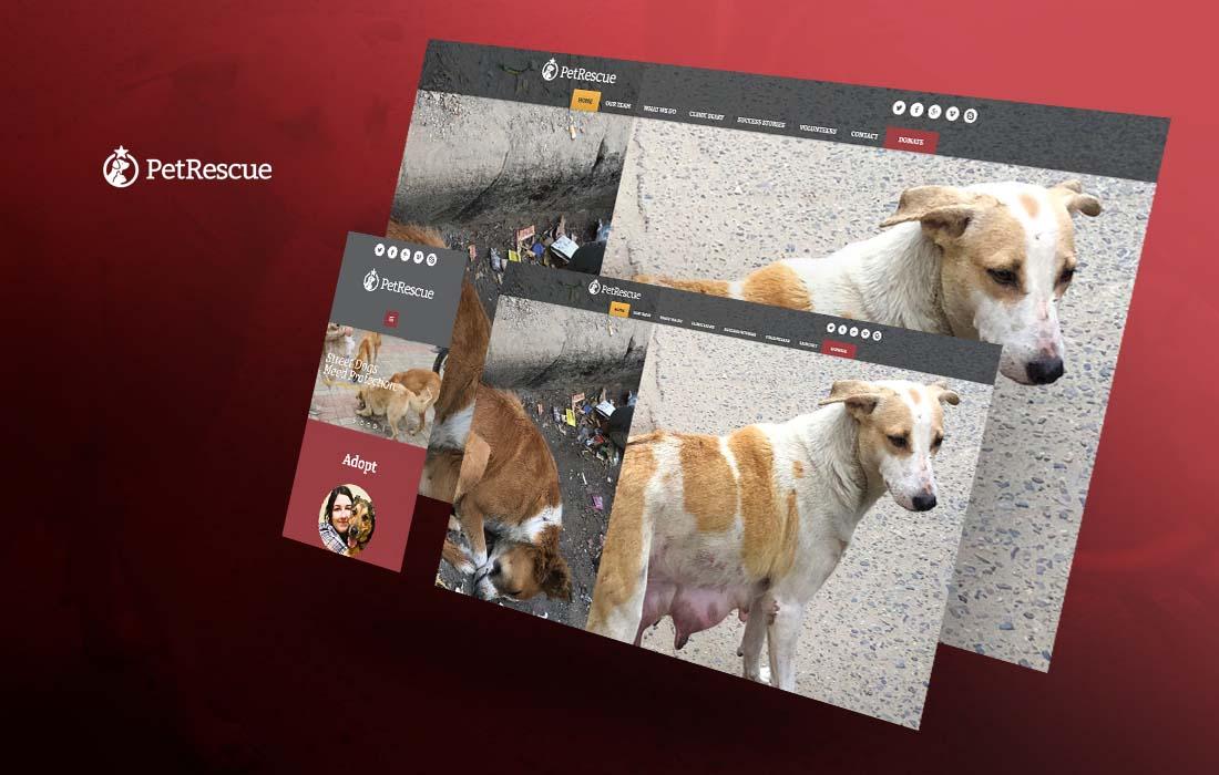 Animal Welfare Charitable Trust - cmsMinds Portfolio