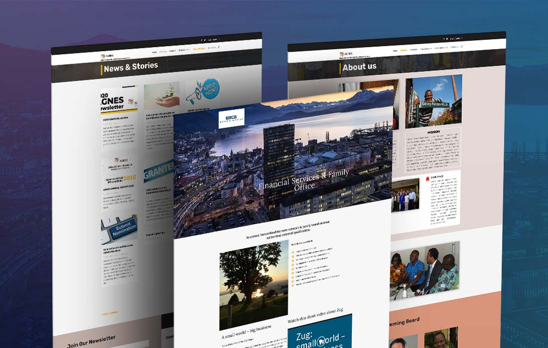 Beffa Group - cmsMinds Portfolio